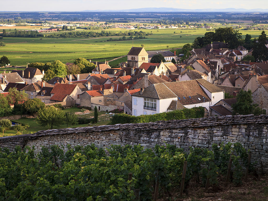 The Wines of Burgundy, Part Two