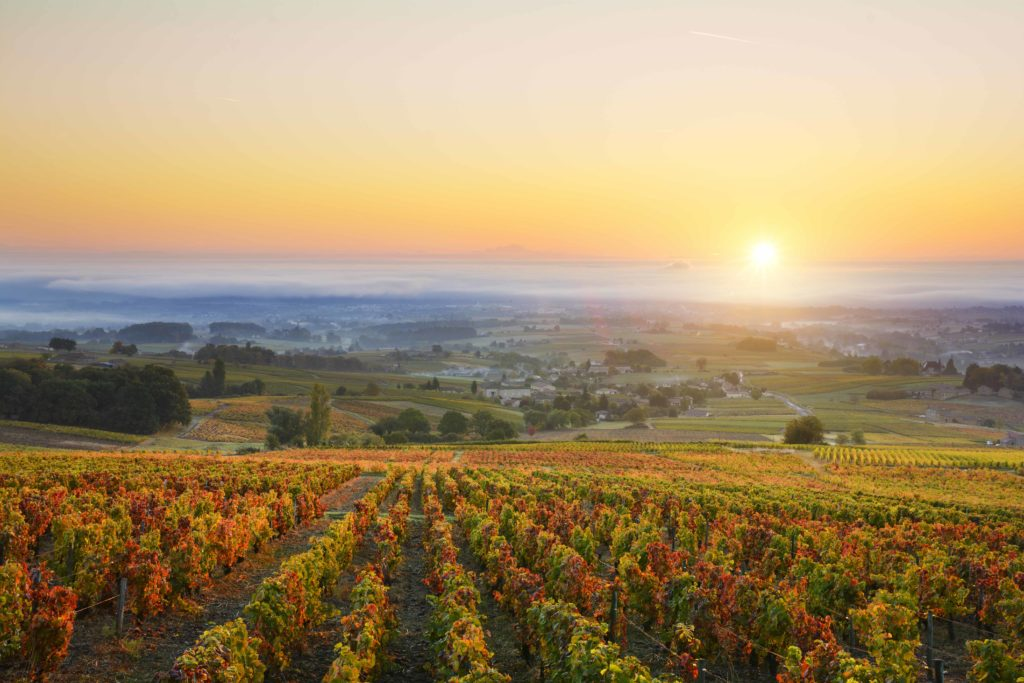 Beaujolais – The Perfect Pairing for Charcuterie