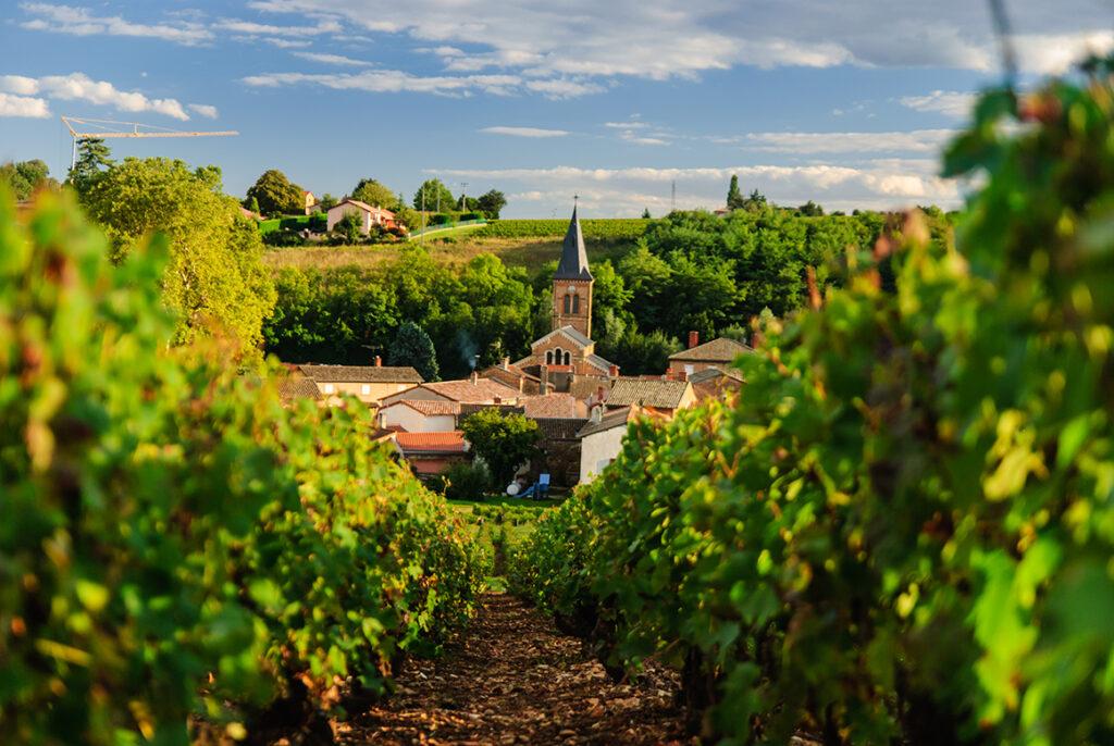 Beautiful Beaujolais to Begin June | 6/1 – 6/6/21